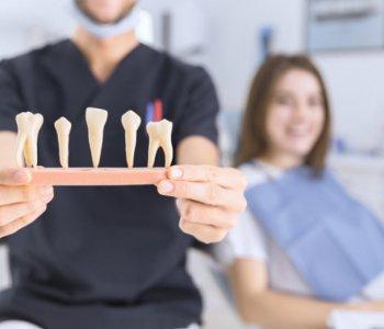Endodoncja – asysta od A do Z